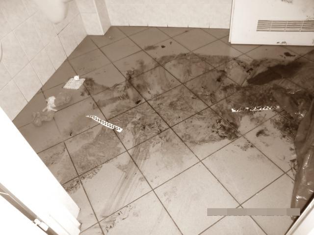 Profesjonalne sprzątanie po zmarłych rozkładzie zwłok dezynfekcja